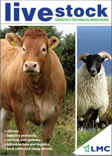 Livestock Meat Commission Advert - Photography by Agri Images