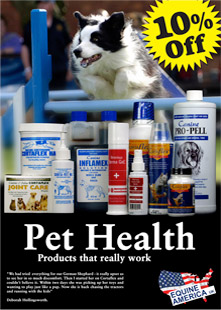 Pet Health Advert - Photography by Agri Images